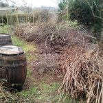 Barril compostador y huerto