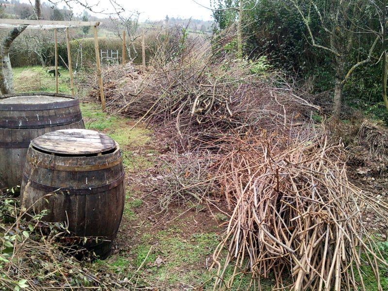 ¿Barril compostador?