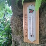 Make a wooden holder for a wall thermometer