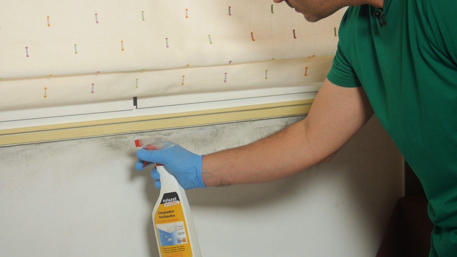 Aplicar limpiador antimoho en las manchas de las paredes