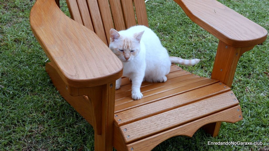 How to assemble an Adirondack wooden chair